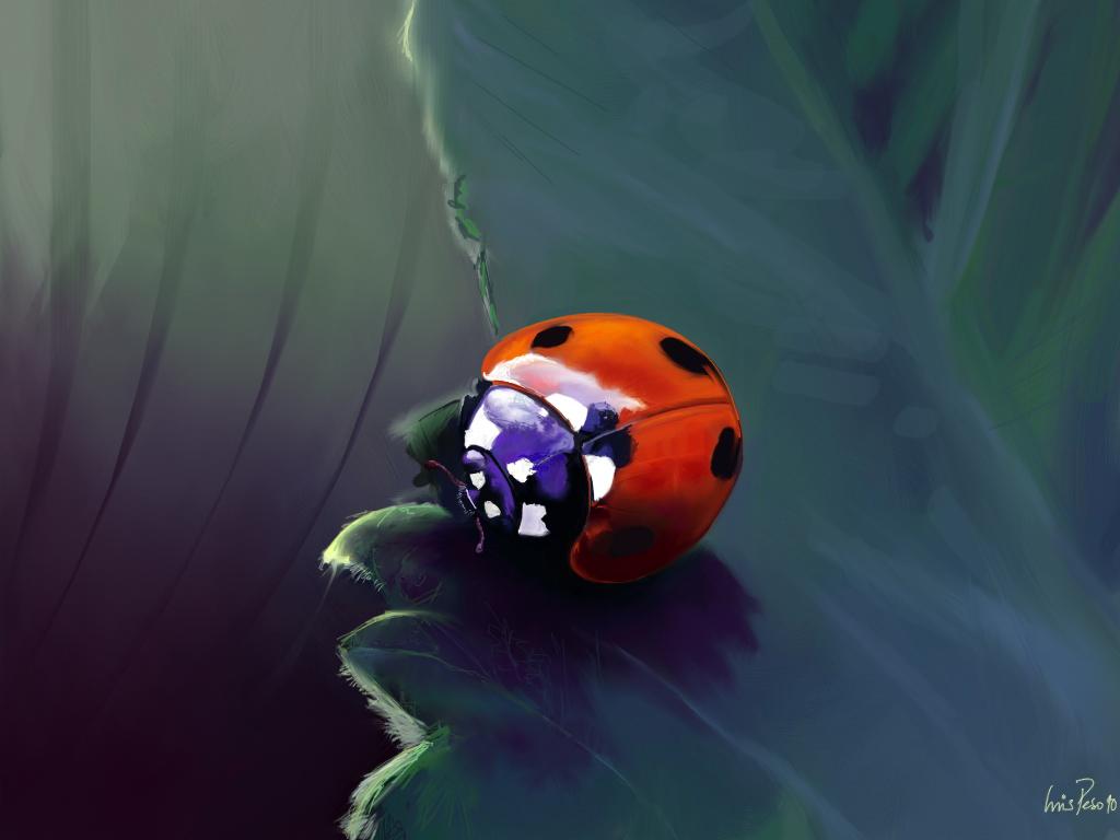 Melancholic Ladybug